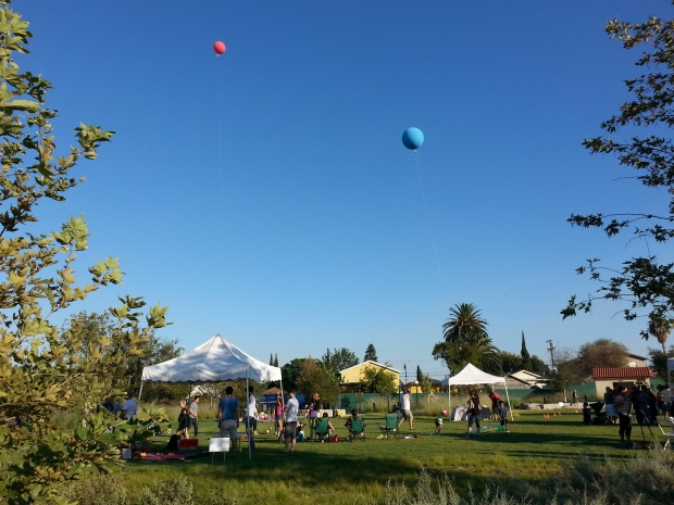 Marsh Park during the launch of Play the L.A. River. Photo by Oscar T. Basulto